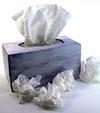 grippe2_v.jpg
