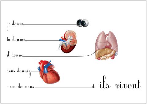 Dons d'organes et PVVIH
