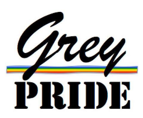 Colloque GreyPride : les actes sont sortis
